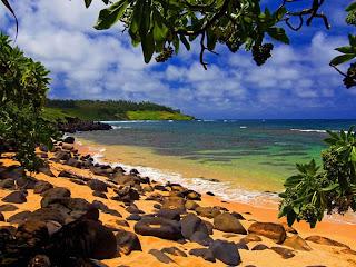 Beach Shade252C Moloaa252C Kauai252C Hawaii   erc