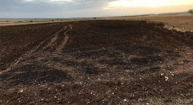 Diyarbakır'ın Ekinciler Köyünde yıldırım düştü 15 dönüm buğday kül oldu