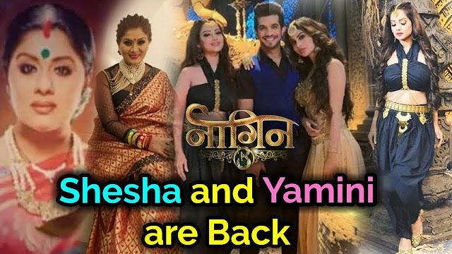 Biggest Twist : Adaa Khan also joins Mouni Roy, Surbhi Jyoti in revenge saga in Naagin 3