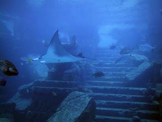 """Atlantis+Piramid%C4%83+Uria%C8%99%C4%83+De+Cristal+%C3%Aen+Triunghiul+Bermudelor7 """"Atlandida E În Marea Neagră. Insula Șerpilor, O Rămășiță"""""""