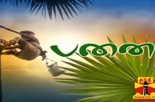 Panai 21-05-2017 A Special Documentary on Toddy Taping   Thanthi Tv