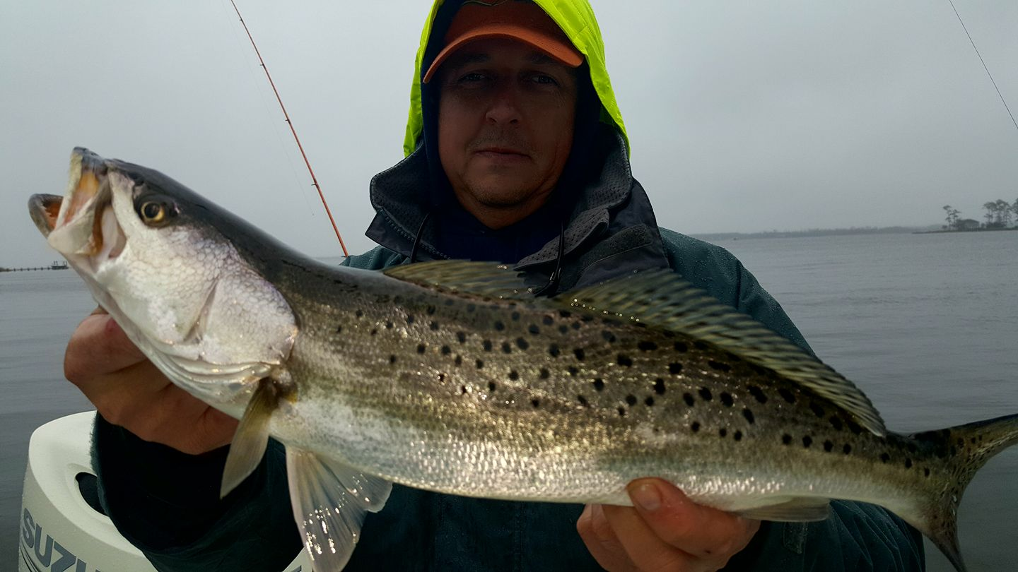 how to cook speckled trout on bbq