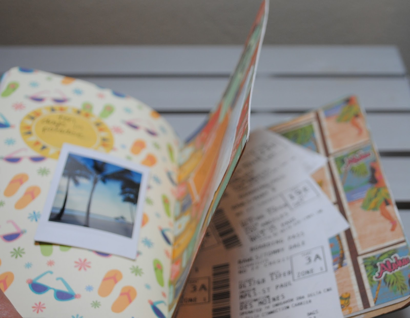 Good Golly Ms Molly Hawaii Travel Journal