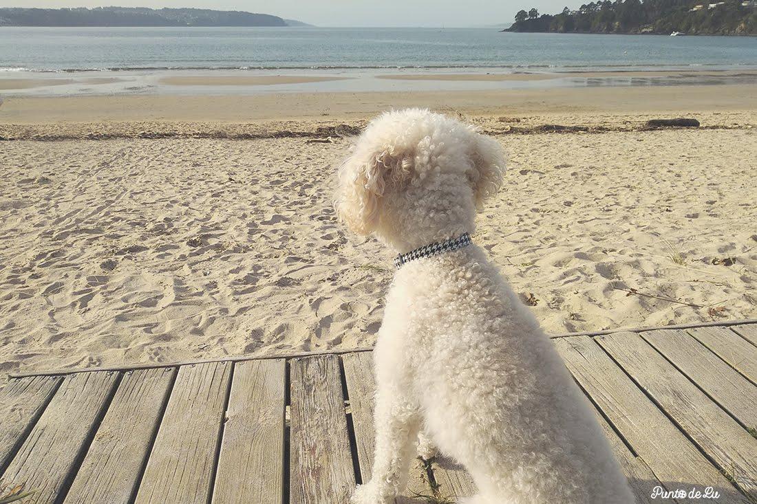Playa de Miño con Mica Punto de Lu