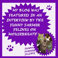 INTERVIEWED ON MOUSEBREATH