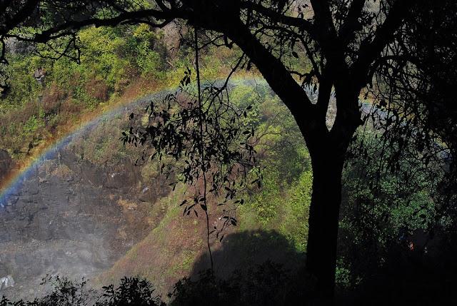 arc-en-ciel au-dessus des chutes