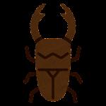クワガタ虫