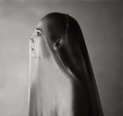 Cosas frugales, La sombra seda de ideas, Francisco Acuyo, Ancile.