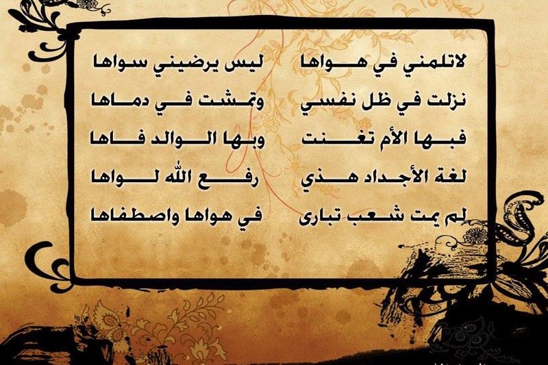 اللغة العربية 528276_1020016472898