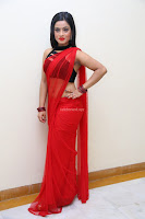 Aasma Syed in Red Saree Sleeveless Black Choli Spicy Pics ~  Exclusive Celebrities Galleries 002.jpg