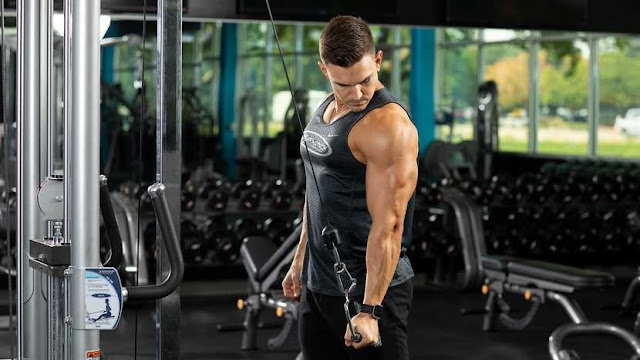 Triceps Development In One Workout