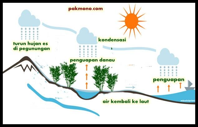 Macam Macam Siklus Hidrologi Air Pak Mono