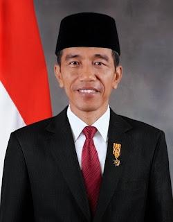 Profil Tinggi Badan Jokowi
