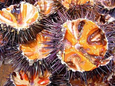 Cầu Gai - Món ăn ưa thích ở Vịnh Hạ Long