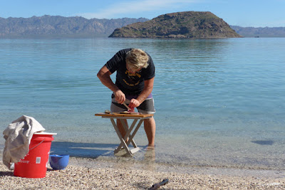Filleting trigger fish on Coyote Beach