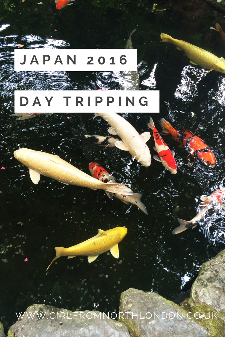 girl from north london, koi carp fish, ise jingu, travel blogger, mini series