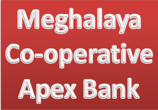 Meghalaya Cooperative Apex Bank Recruitment