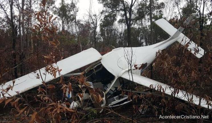 Avioneta estrellada en el bosque