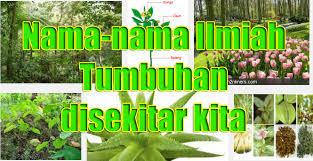 1001 Nama Ilmiah Tumbuhan Dan Hewan