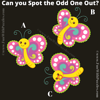 Answer of Easy Odd One Out Kids Picture Riddle