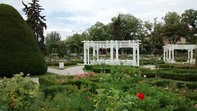 jardin flores timisoara rumania