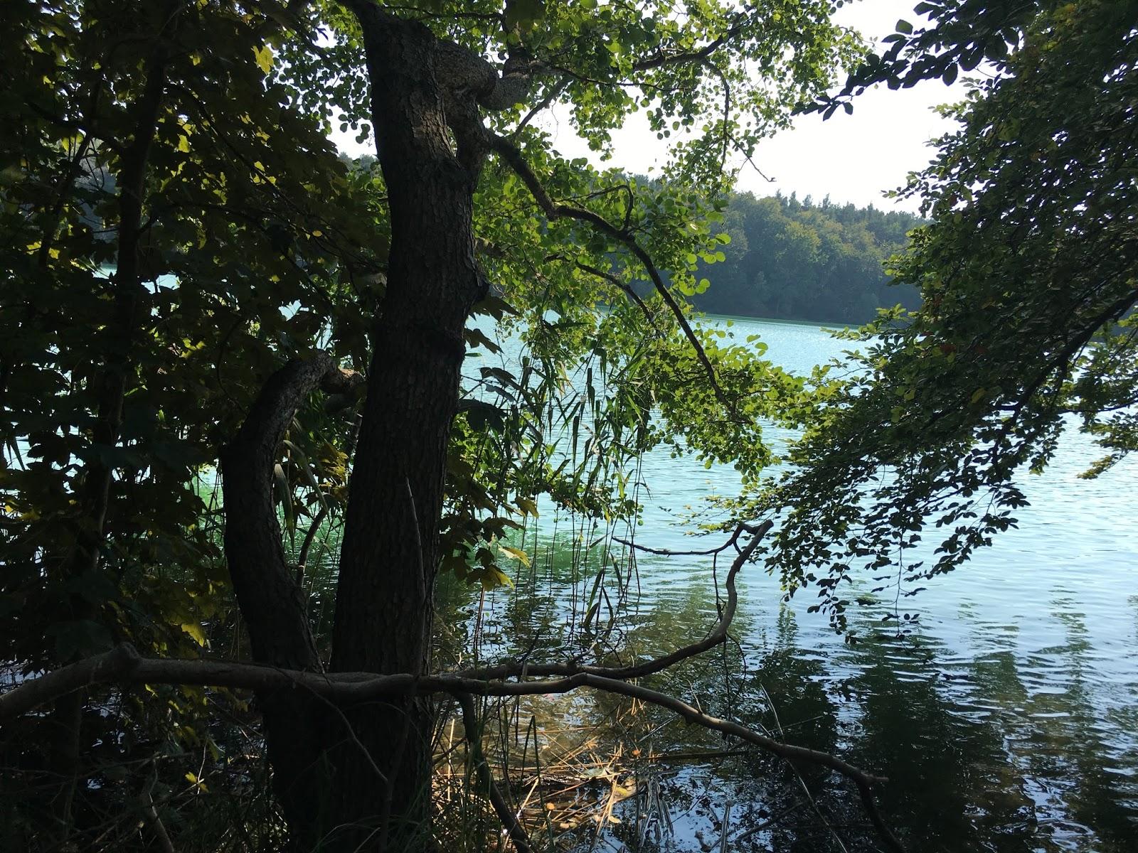 Liepnitzsee bei Berlin See und Wald Baden