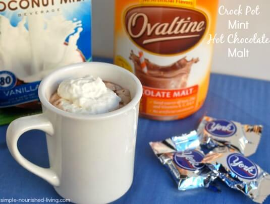 Weight Watchers Crock Pot Mint Hot Chocolate Malt