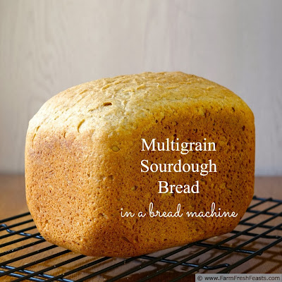 Feed South Africa + Multigrain Sourdough Bread (in a bread machine) | Farm Fresh Feasts