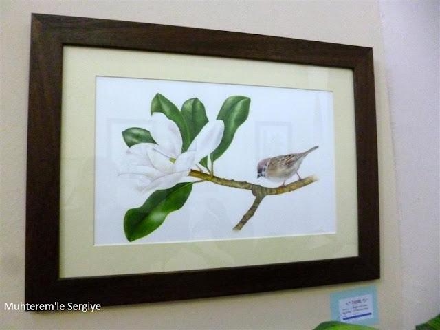 Bilimsel bitki çizimi eğitimi