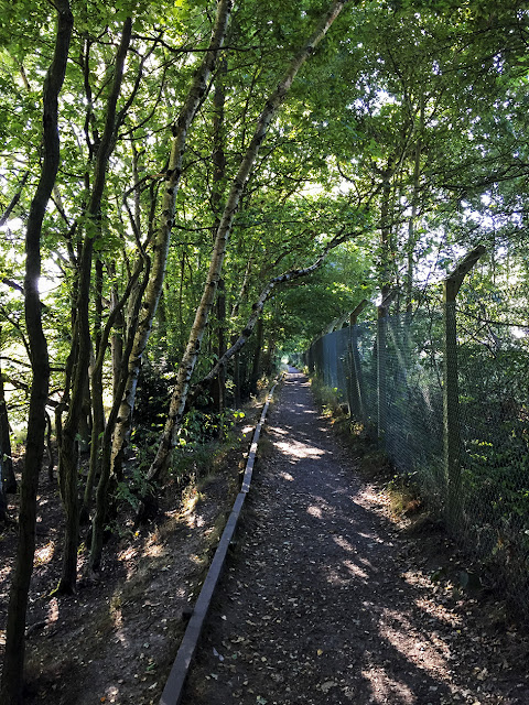 Railside path.  Walk around the Hawkwood Estate 11, 30 August 2016.