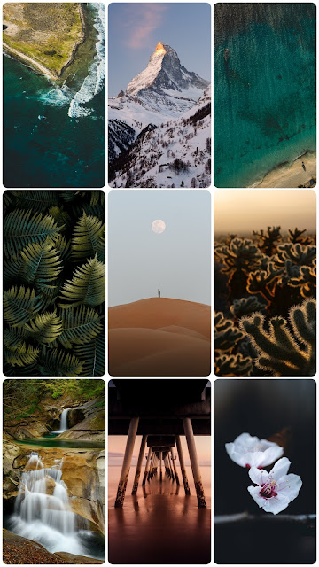 montain deser leaf nature sea ecean sand waterfal flower beautiful wallpapers in 1080p