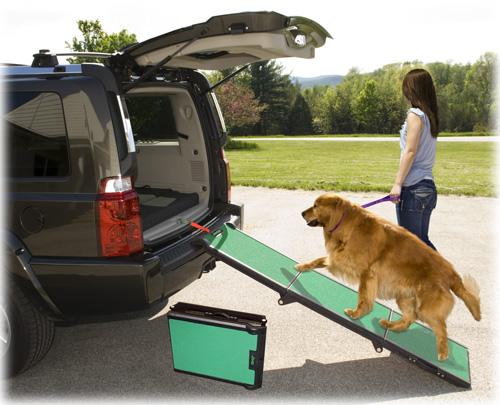 Pet Ramp For Car >> PSICOLMASCOT: Cómo adiestrar a tu mascota con rampas o
