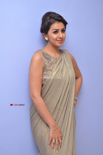 Nikki Galrani in Saree 060.JPG