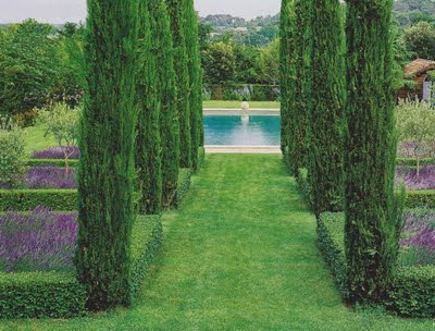 French formal garden style with pool