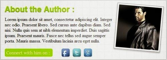 Author box στο blogger