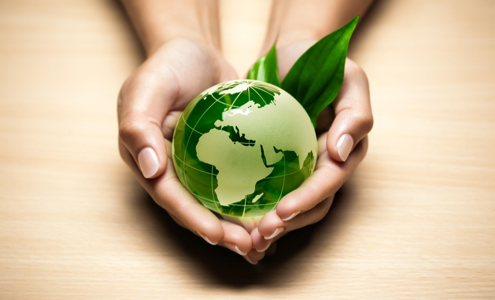 Going Green With Rubbish Removal Services For Your Business