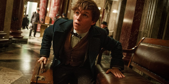 Eddie Redmayne em ANIMAIS FANTÁSTICOS E ONDE HABITAM (Fantastic Beasts and Where to Find Them)