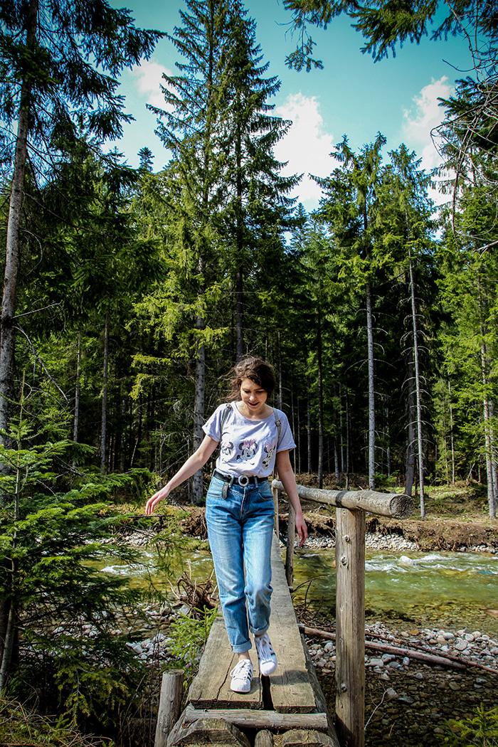 krokusy, zakopane, dolina chochołowska, krokusy w dolinie chochołowskiej