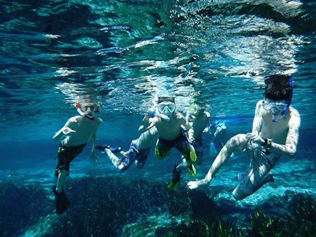 Orlando Dive & Snorkel Tours em Orlando