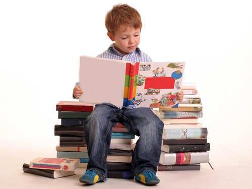 BoyReading Books Mengenal Macam macam Teknik Membaca