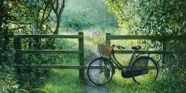 Bahçe, Bisiklet