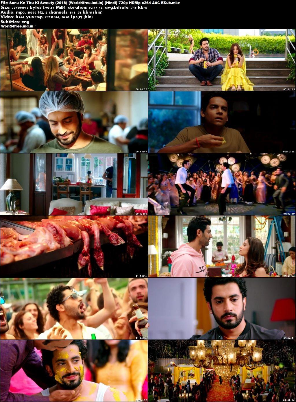 Sonu Ke Titu Ki Sweety 2018 world4free.ind.in Hindi Movie Download HDRip