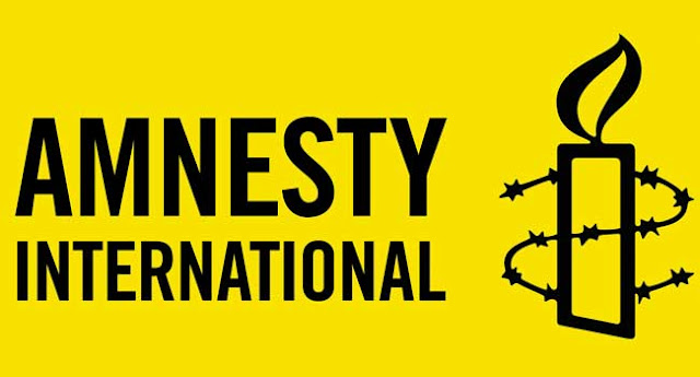 Amnesty International: Nigerian Army wants it out of the country