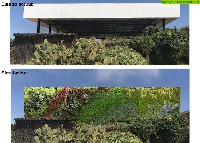 El Ayuntamiento de Los Llanos de Aridane instalará un jardín vertical de 120 metros cuadrados  para mejorar la estética de la Plaza de la Glorieta