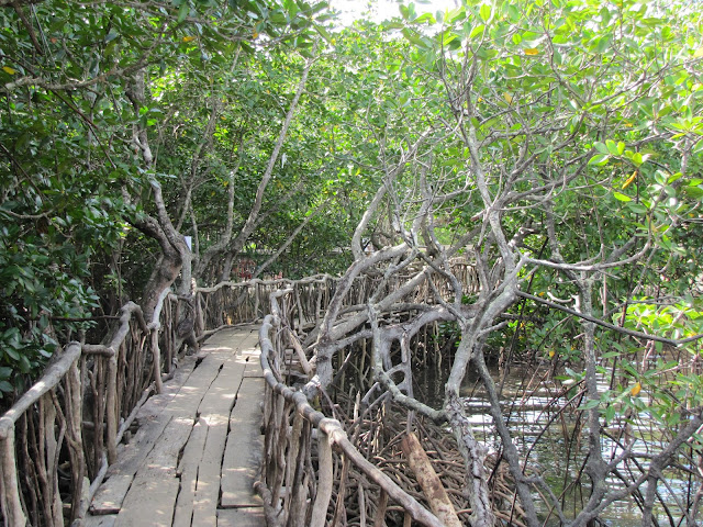 maquinit hot spring walkway coron philippines