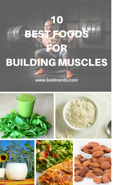 10 Best Foods for Building Lean Muscles