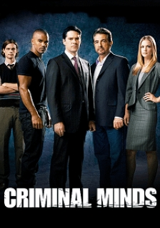 Baixar Criminal Minds 11ª Temporada Legendado