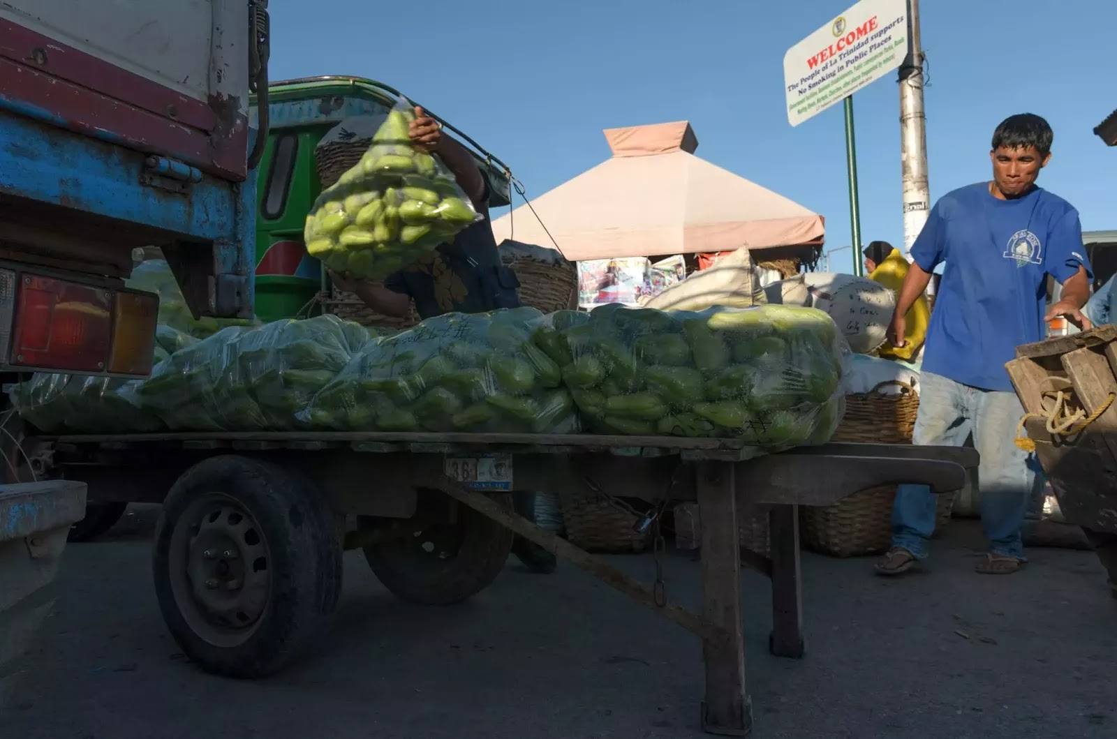 Porter Cart Chayote Vegetable Produce Parking Area Trading Post La Trinidad Benguet Cordillera Administrative Region Philippines