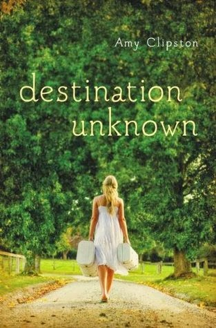 http://booksforchristiangirls.blogspot.com/2014/02/destination-unknown-by-amy-clipston.html