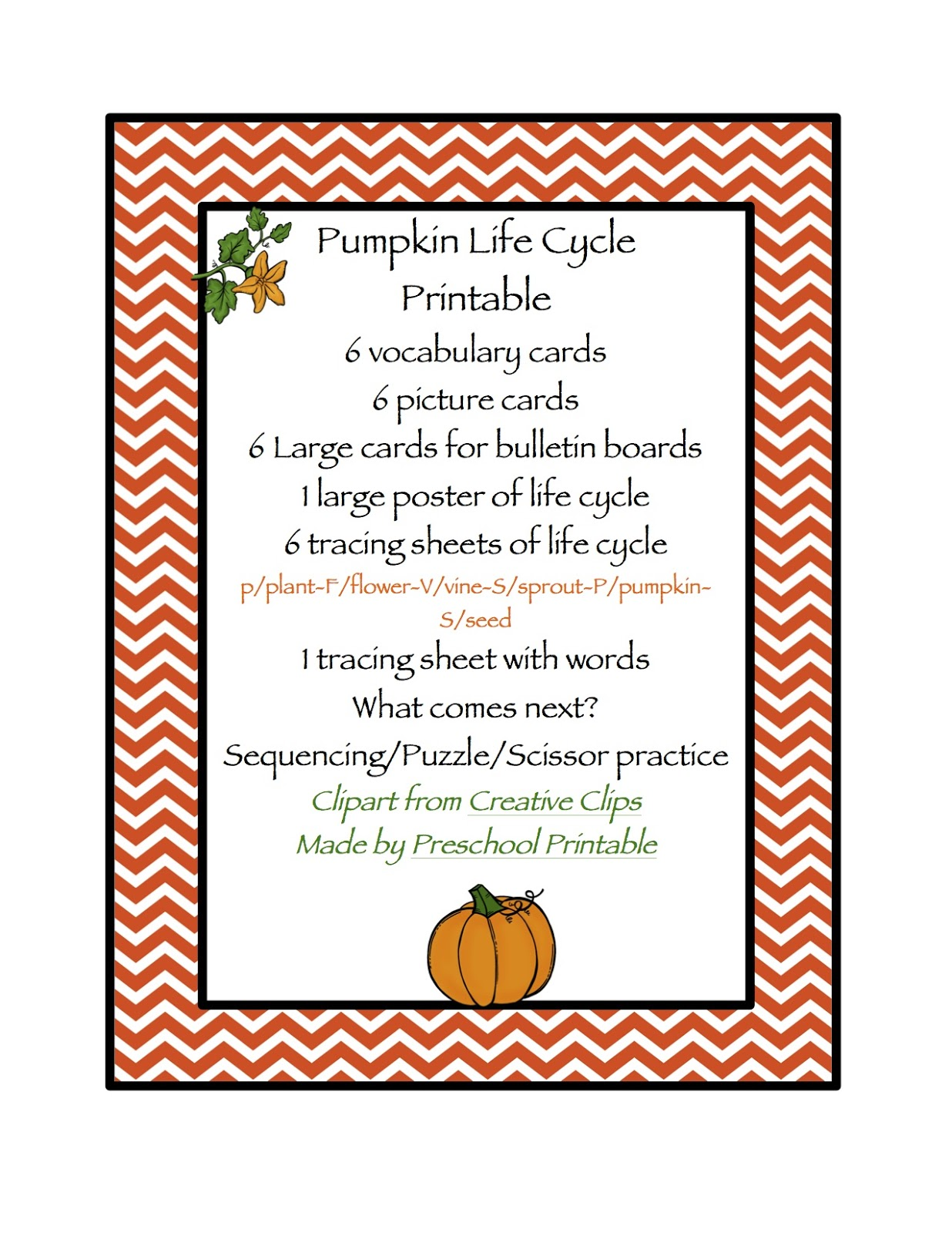 Pumpkin Life Cycle Printable Preschool Printables